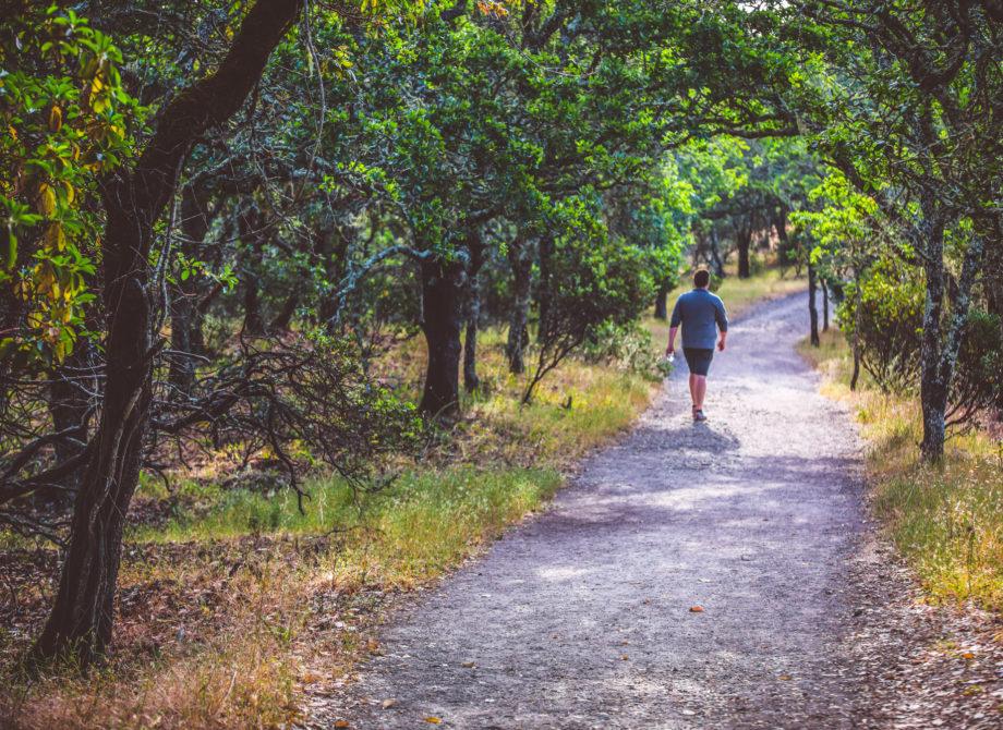 Foothill Regional Park