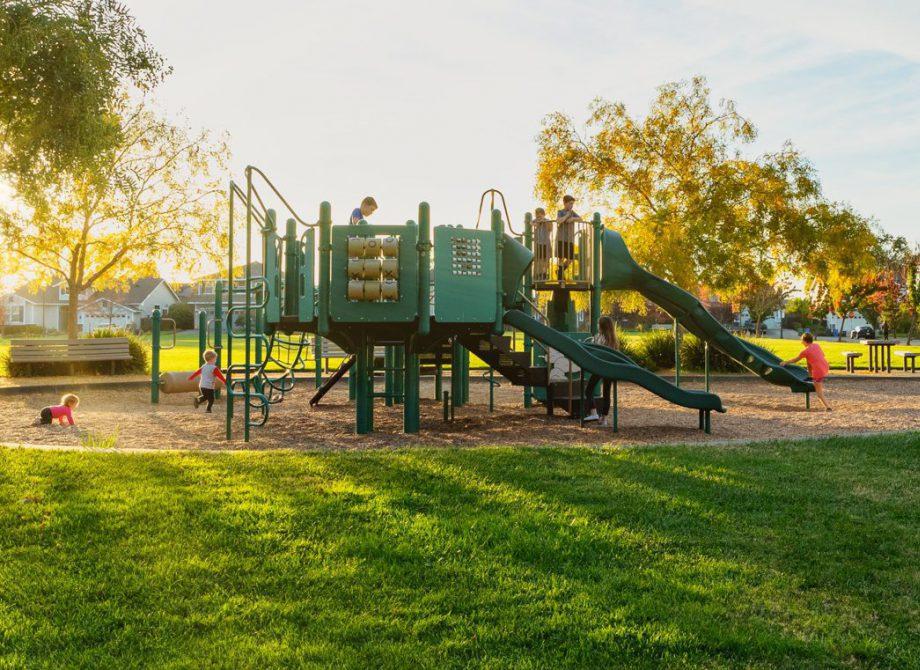 Vintage Oaks Park